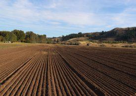 Превеждат 635 млн. лева субсидии на фермерите