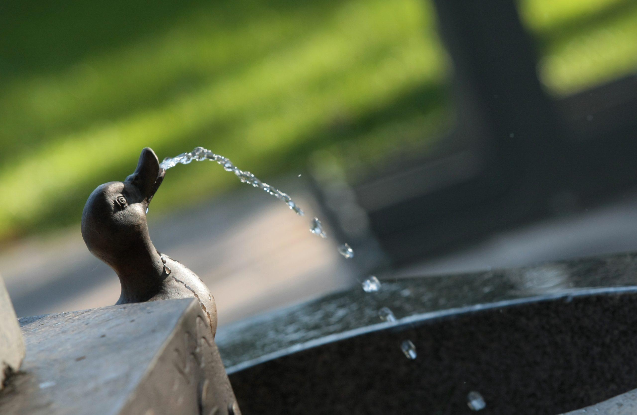 И за какво плащаме по-скъпата вода?