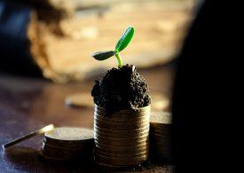 1349 лева средната заплата за декември, наетите намаляват