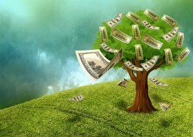 Кредитът само влошава корона-кризата