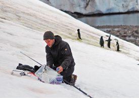 Позеленяването на Антарктида