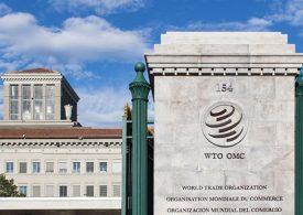 СТО отбеляза силен ръст на търговията, но е съмнително, че възходът ще продължи