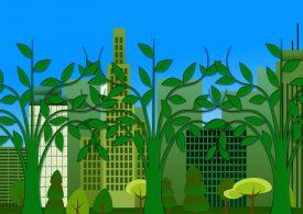 Google с мащабна безвъглеродна корпоративна програма