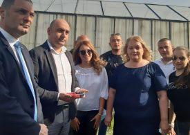 От 16 октомври плащат на фермерите помощи заради Covid-19