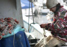 """""""Черен ден"""" влоши позициите на риболова в Обединеното кралство"""